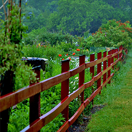 Fence services category image