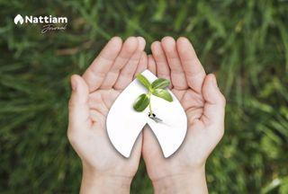 Ten sustainable things