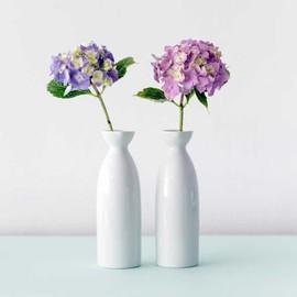 Duo of white ceramic vases small