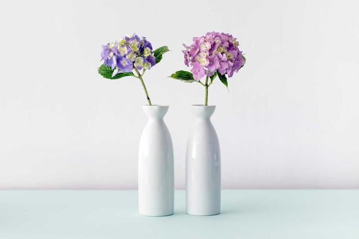 Duo of white ceramic vases
