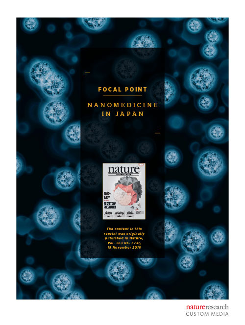 Focal Point on Nanomedicine in Japan