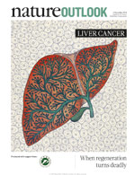 Nature Outlook: Liver Cancer