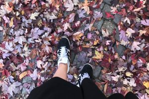 <b>Min vecka i bilder | v42 2018</b>