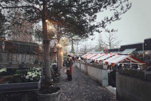 <b>Årets första lussekatt och julmarknad</b>