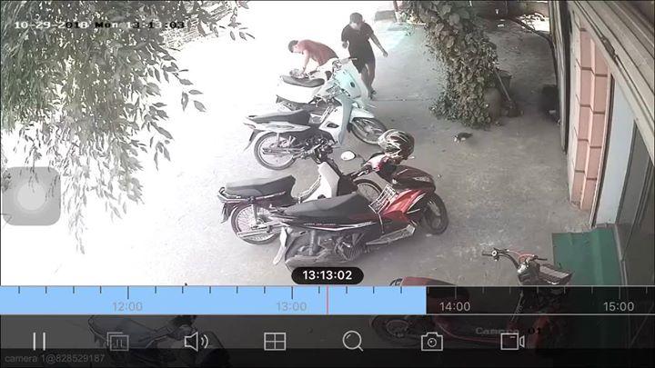 🎬📢  Nhà mất con mèo con, check cam chủ nhà không tin vào mắt mình  Huyện Văn Lâm - Hưng Yên... - Photos byDung Art