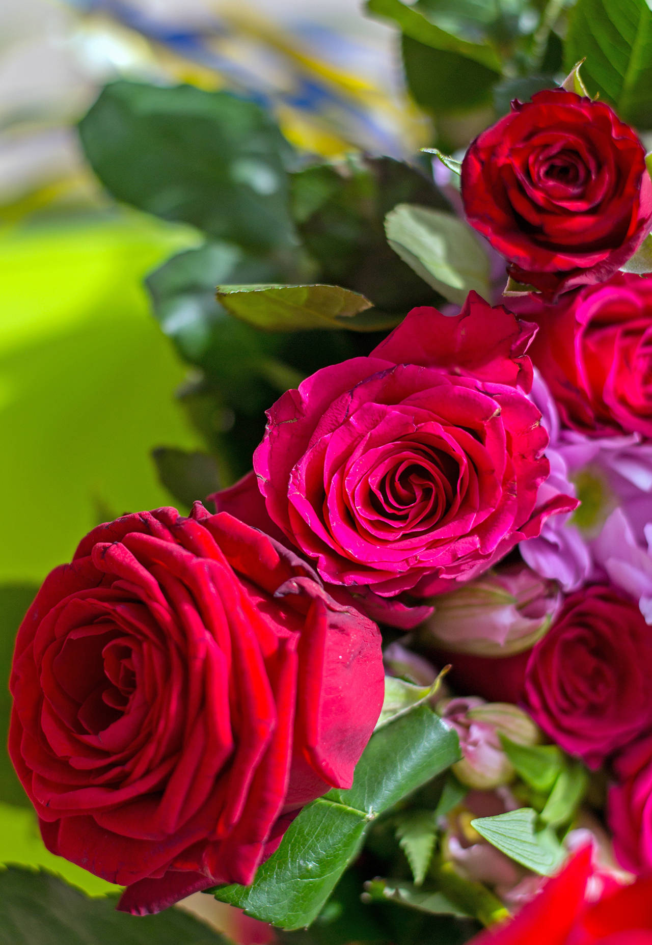 Master Gardener: Roses are red … but why? | The Daily World