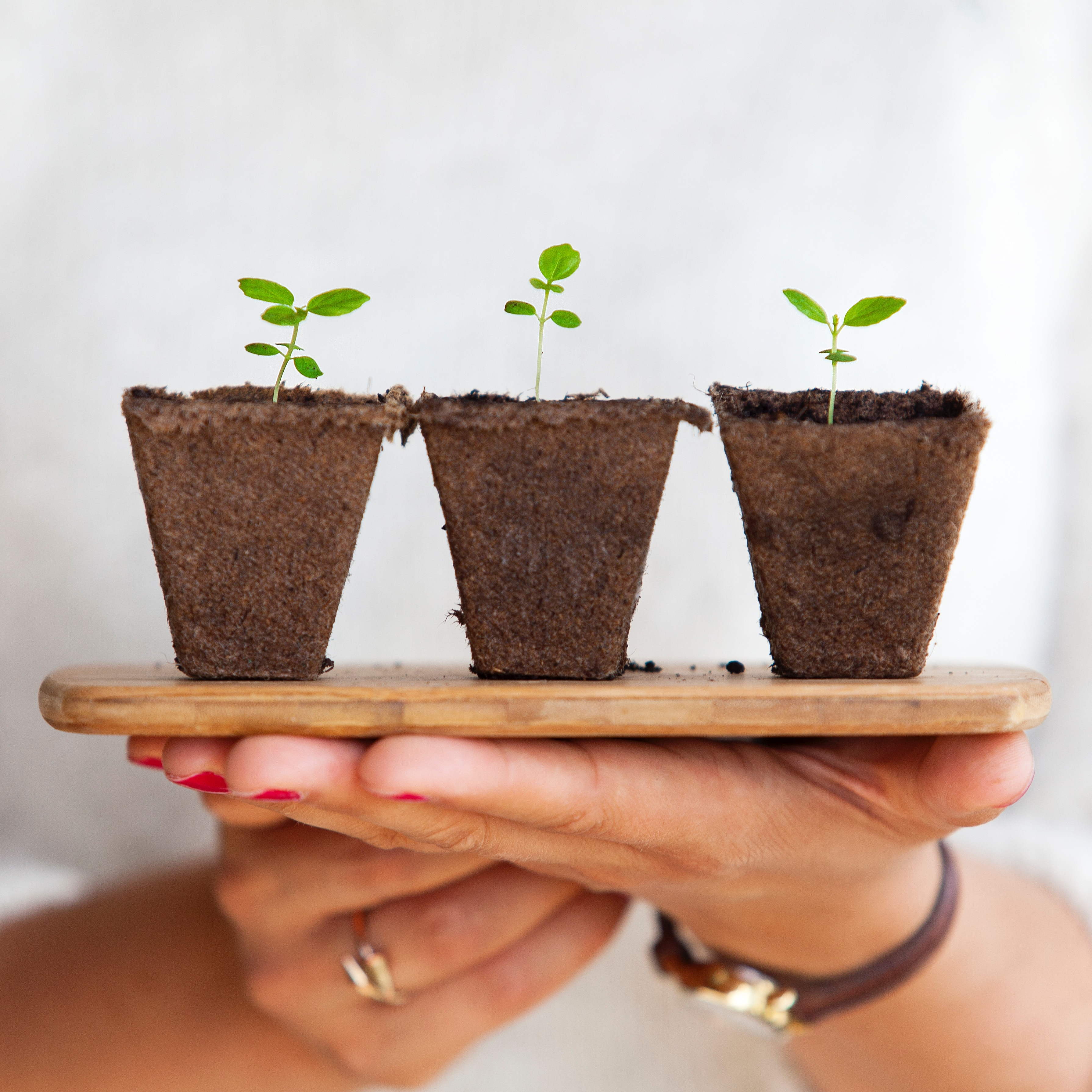 Why Corporate Social Responsibility is Required for Business Growth
