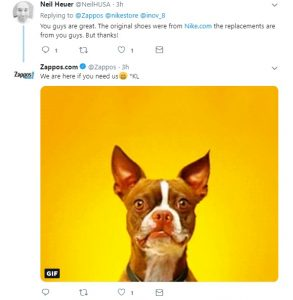 Another screenshot of a tweet from Zappos