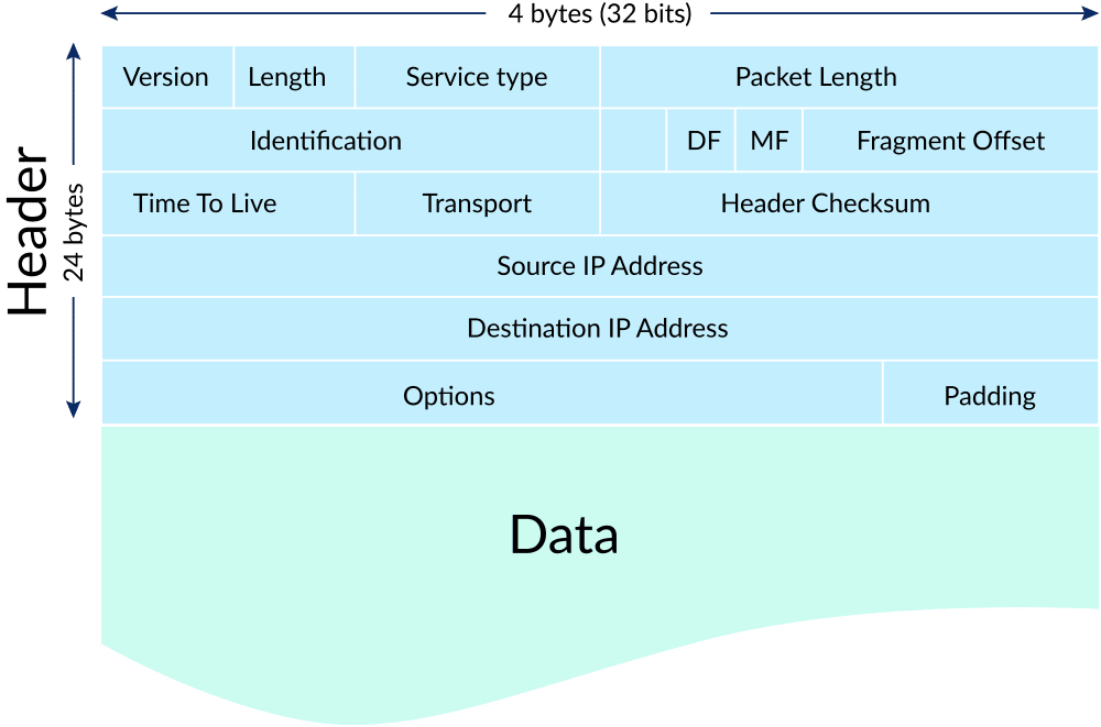 Diagram of an IP Data Packet
