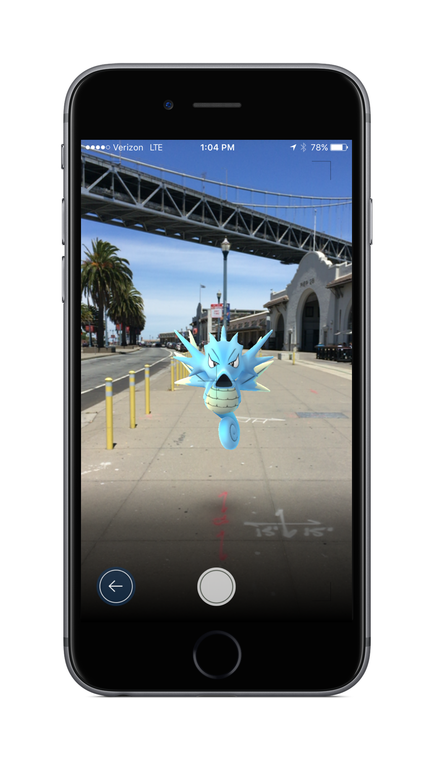 Pokémon GO Camera Screenshot
