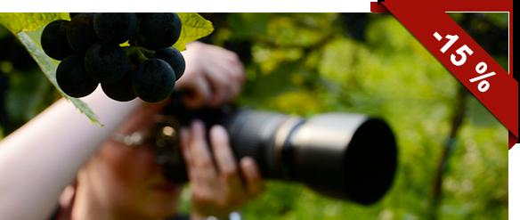 Fotografický víkend na Pálavě: na vinice s Topim Pigulou