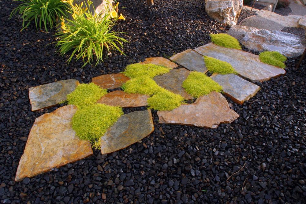 Creative Landscape Pathway Ideas