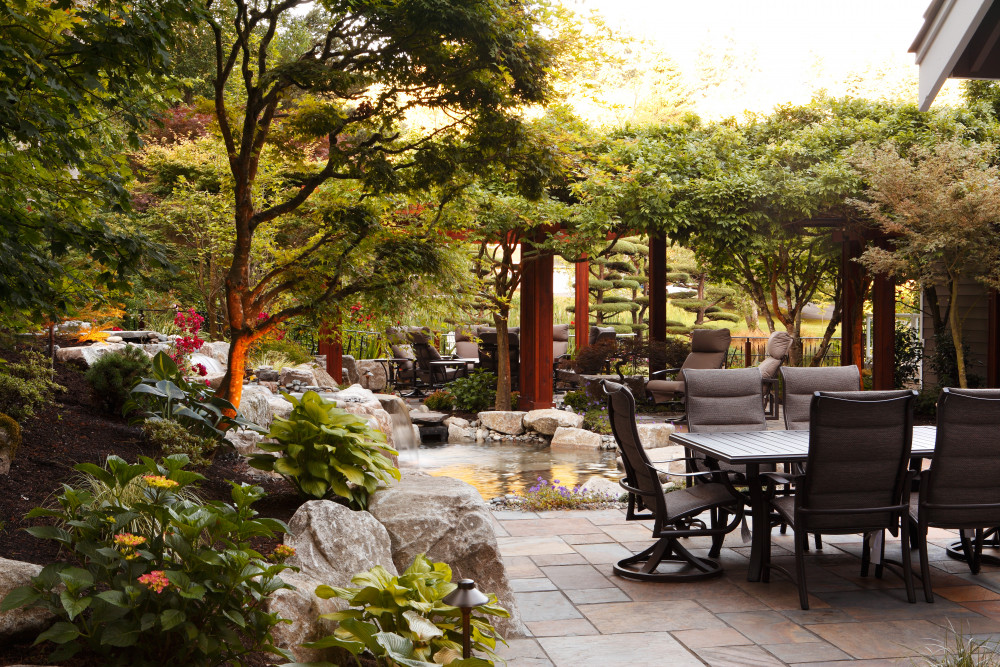 Small Yard, Big Dreams: Getting the Most Out of Your Little Space
