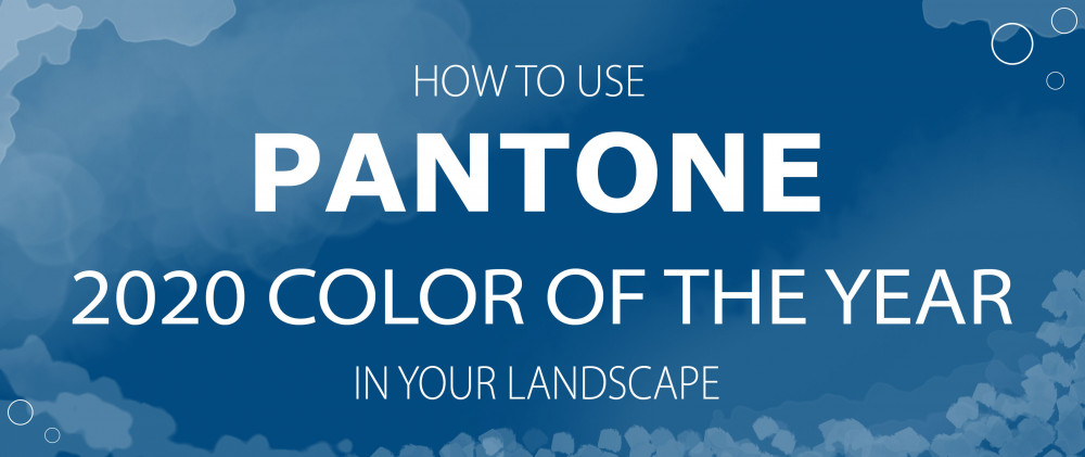 How to Use the Pantone 2020 Color of the Year in Your Landscape
