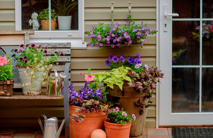4 Spring Landscaping Mistakes to Avoid