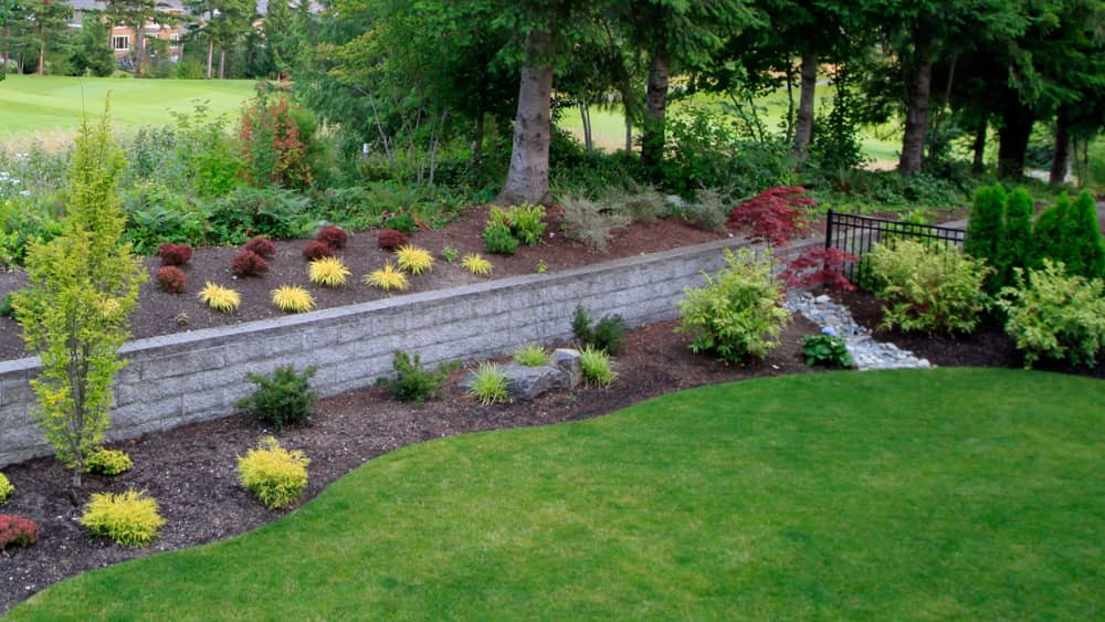 Landscaping vs The Hell-Strip: How to Fight Back