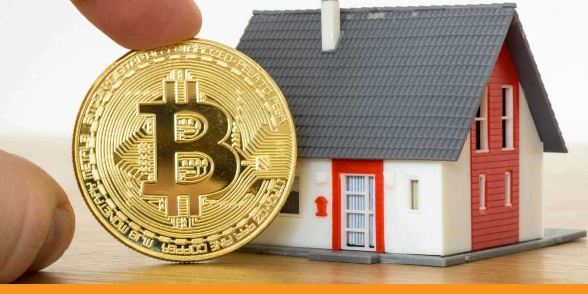 Is Bitcoin crowding out stocks and real estate?