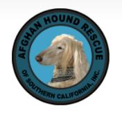 Afghan Hound Rescue - San Dimas, CA