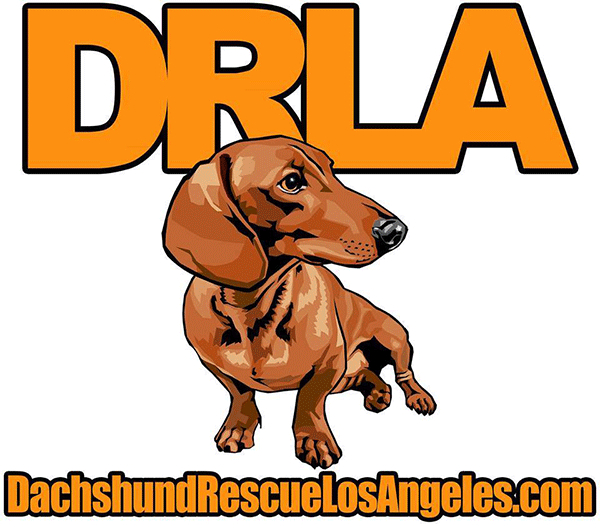 Dachshund Rescue of Los Angeles - Los Angeles, CA