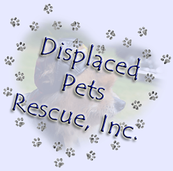 Displaced Pet Rescue - Veronia, OR