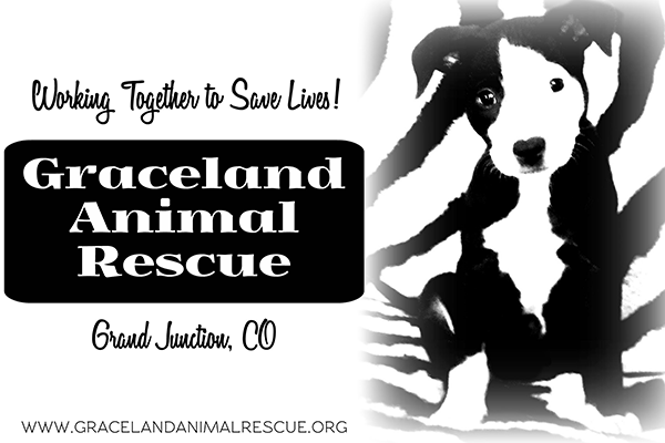 Graceland Animal Rescue - Grand Junction, CO