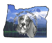 Oregon Basset Hound Rescue - Keizer, OR