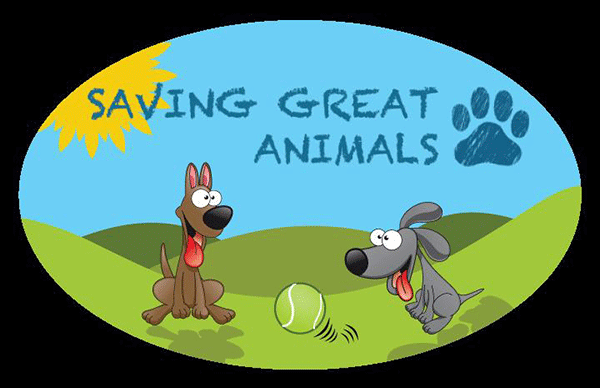 Saving Great Animals  - Seattle, WA