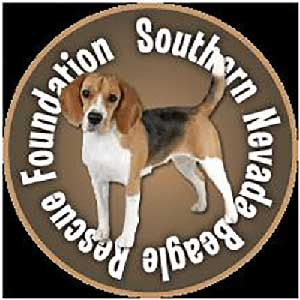 Southern Nevada Beagle Rescue Foundation - Las Vegas, NV