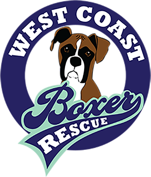 West Cost Boxer Rescue - Alameda, CA
