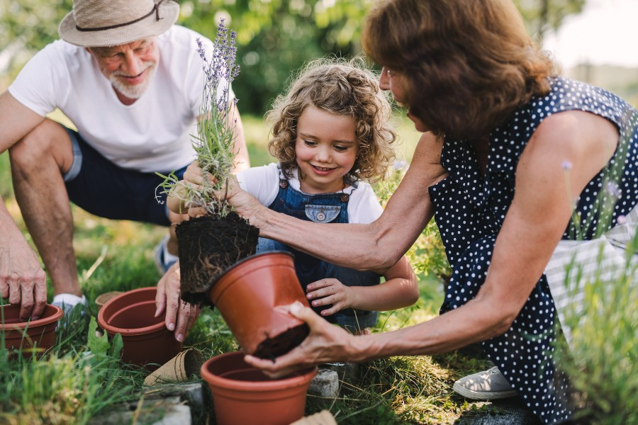 seniors gardening with their grandchild for a summer activity for seniors