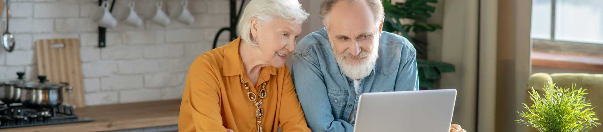 A senior couple looking at a laptop