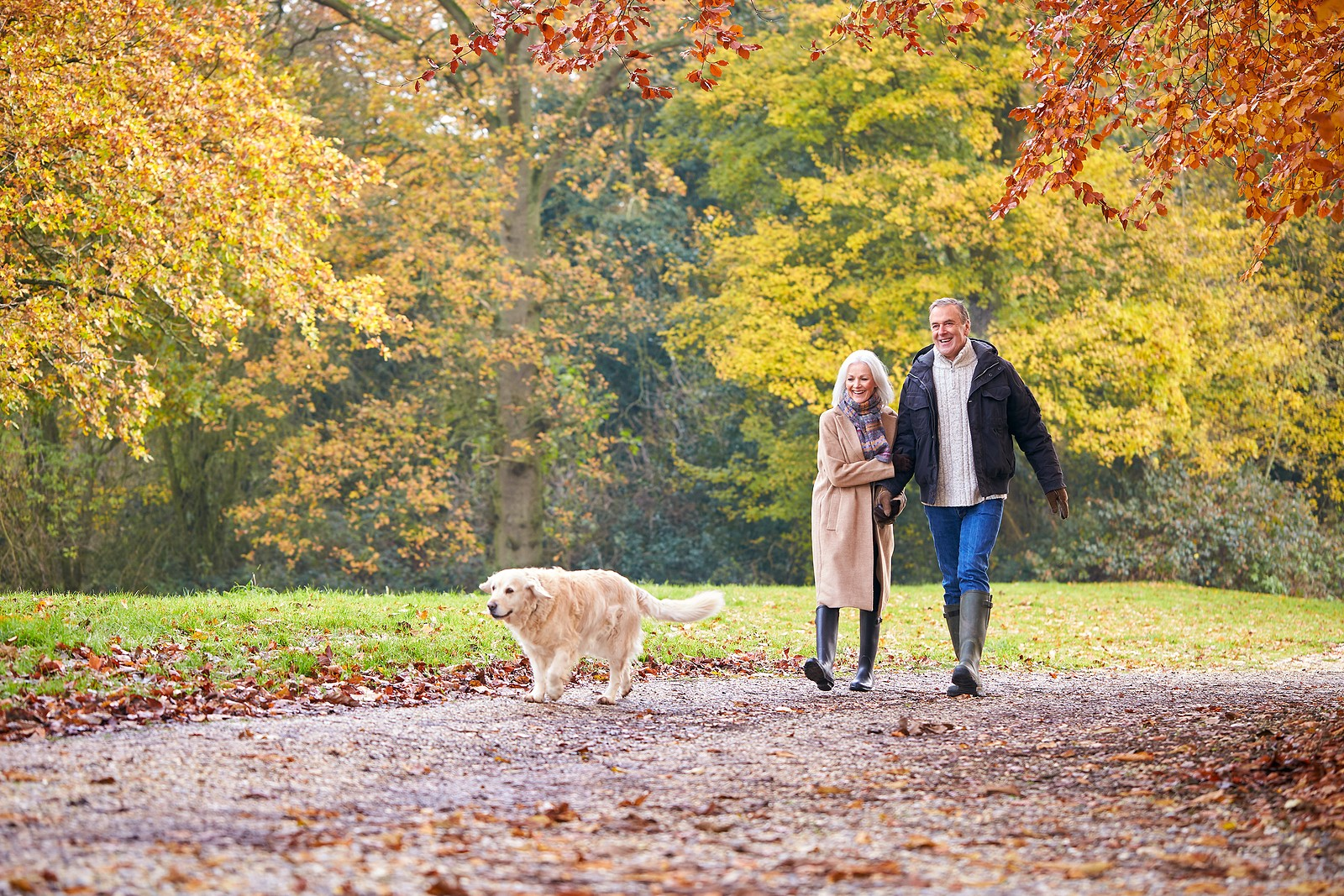Senior couple walking in park with dog.