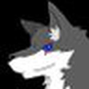 @warwolf9001