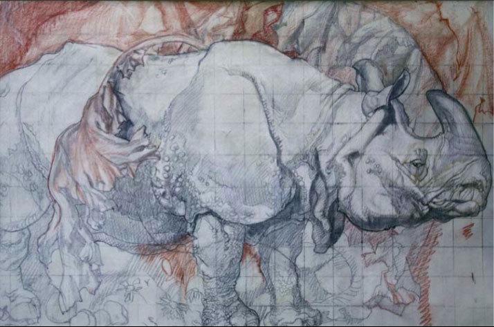 Sir Frank Brangwyn, Study of Rhino, around 1927, Glynn Vivian Art Gallery, Swansea