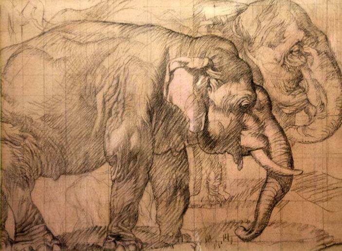 Sir Frank Brangwyn, Study of Two Elephants, on pink paper, around 1927, Glynn Vivian Art Gallery, Swansea
