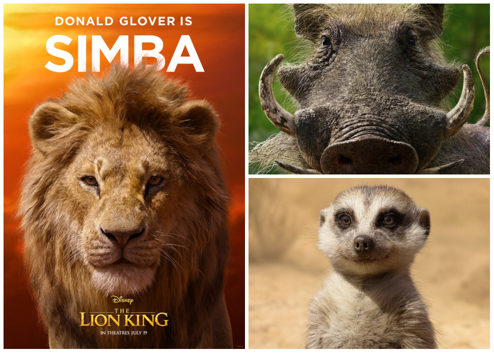 Photos Disney Releases New The Lion King Character