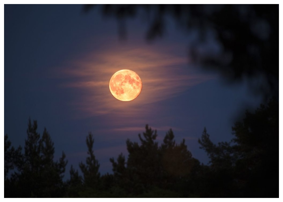 Stargazers Alert! A Pink Supermoon Will Be Visible In Cairo Tonight   NileFM   EGYPT'S#1 FOR HIT MUSIC
