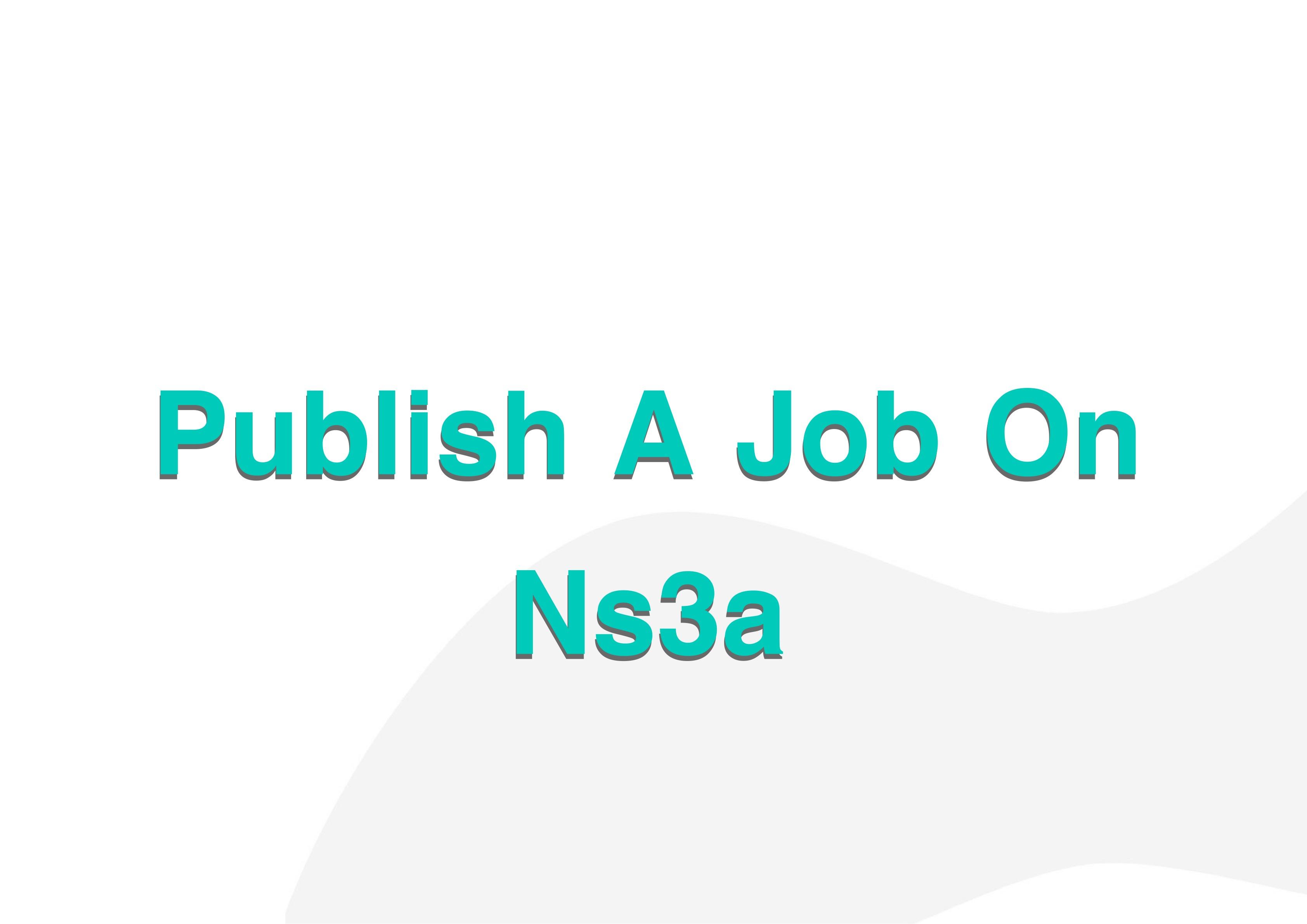 Publish A Job On Ns3a