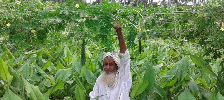 लॉकडाउन में किसानों को मिला रोजगार का नया जरिया