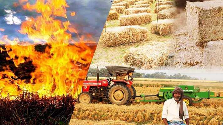 फसलों के अवशेष खेतों में ना जलाएं... मृदा स्वास्थ्य पर होता है विपरीत असर