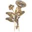Broche Siglo XIX de Oro y Diamantes