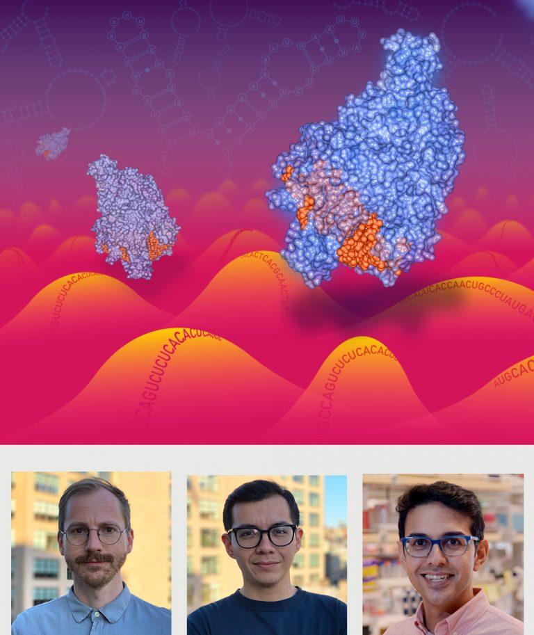 New Kind of CRISPR Technology to Target RNA, Including RNA Viruses Like Coronavirus