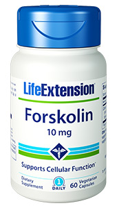 Derived from the ancient medicinal plant Coleus forskohlii, Forskolins basic mechanism of action is the activation of an enzyme, adenylate cyclase, which increases cyclic adenosine monophosphate (cAMP) in cells.621-->  Cyclic AMP is perhaps the most important cell-regulating compound. Once formed