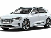 Audie-tron - e-tron 55 quattro advanced 4% bijtelling volledig/ Panodak/ Bang & Olufsen/ HUD Fabrieksga