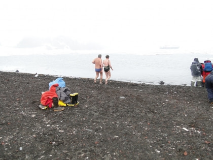 Take a plunge in Antarctic waters#}