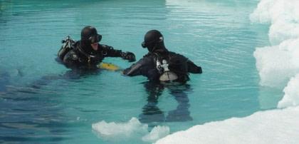 Diving in Spitsbergen#}