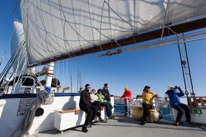 Sailing#}