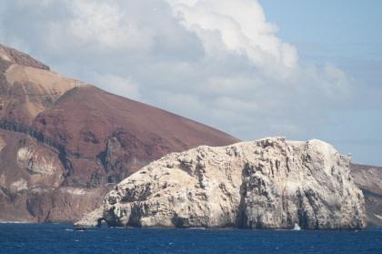 Boatswain Bird Island vor der Küste von Ascension (Himmelfahrtsinsel)#}
