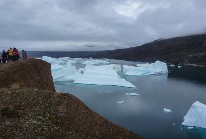 Ost Grönland – Scoresbysund, Nordlicht - Vogelbeobachtung
