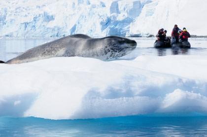 Antarktis - Basecamp
